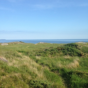 View South to Fastnet