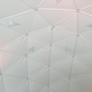 The ceiling of one of the Geodesic Domes