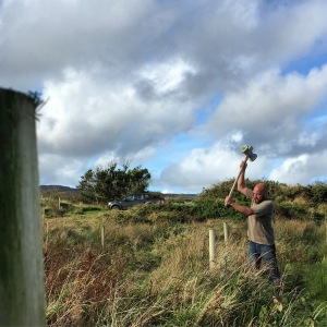 1.3km of fencing underway