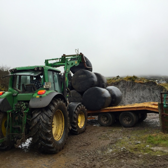 Silage bales being loaded onto trailer